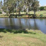 פארק עם נהר באמצע
