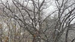 פילדלפיה בשלג