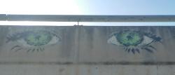 עיניים על הגשר