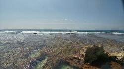 ים וסלעים