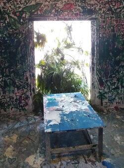 חלון, שולחן, ענפים