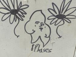 פרחים על הקיר